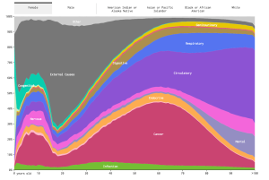 Nathan Yau's visualization of the causes of death.
