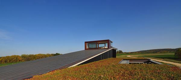 Green roof.