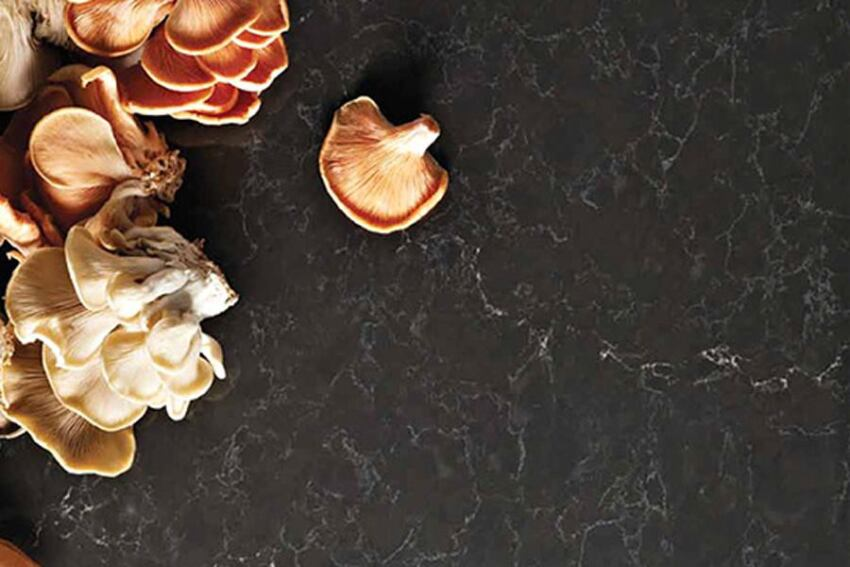 Caesarstone Updates Its Classico Collection