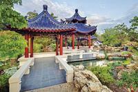 Chinese Water Garden