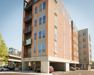 Lake
