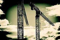 Praying for Cranes