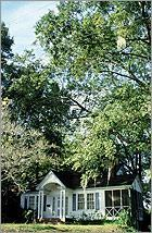 Mature deciduous trees provide shade in the summer.