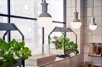 Ikea Introduces Indoor Gardening Kits