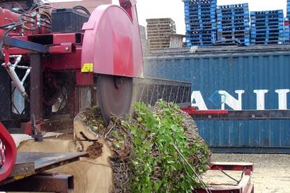 CitiLog Newark Urban Sawmill