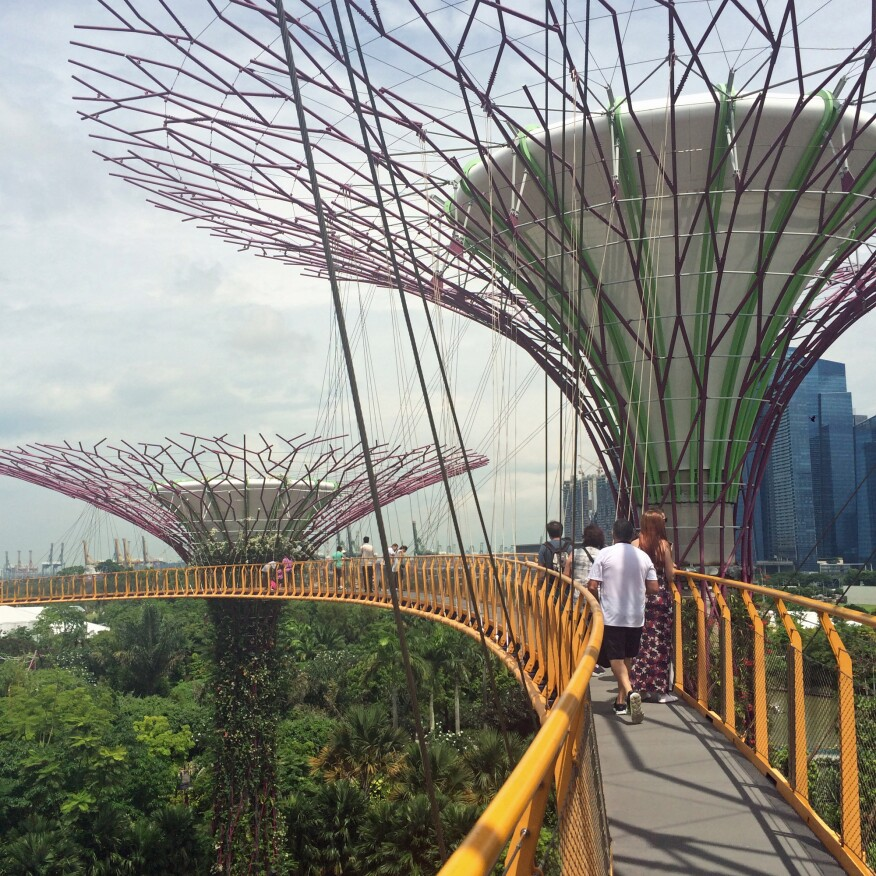 ARCHITECT explores the Supertrees walkway.