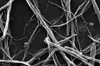 Rice University Researchers Use Graphene as a De-Icing Agent for Glass