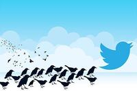 Expert Guidelines on Using Twitter for Business