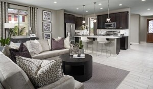 A look at the Amethyst floor plan's open great room and kitchen.
