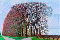 David Hockney Exhibit at San Francisco's de Young Museum