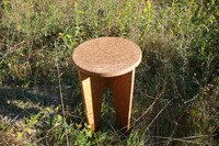 Innovative Furniture Grown from Mushroom Materials