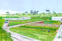 D.R. Horton Breaks Ground on Master Planned Community in Oahu