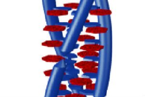 Cyanic acid can modify DNA's familiar double-helix structure into a triple-helix formation.