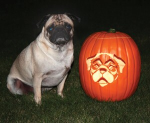 "One of the pumpkin carving winners was Dawn Rasmussen with ""Pug-kin,"" a tribute to her dog."