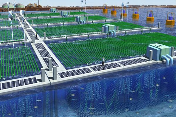 An artist's rendering of a full-scale implementation of NASA's OMEGA technology, which uses algae to wastewater into biofuel.