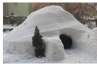 Craze Igloo? Blizzard in Brooklyn Ices Airbnb's Most Unusual $200-a-Night Deal