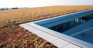 """LiveRoof and their greenhouse partners customize this prevegetated, invisible green roof system to the climate and structure of each building. The modules hold soil and seeds and are completely selfcontained. They need no filter fabrics or drainage channels.    1' x 2' modules in 1 7/8"""" or 3 1/4"""" depths  liveroof.com"""