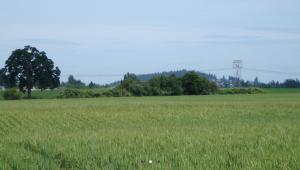 Reeds Crossing, Newland Communities, near Portland, Ore.