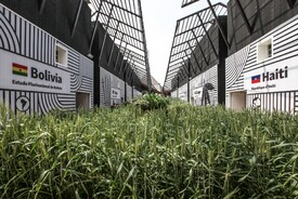 Milan Expo 2015: Cereals and Tubers Cluster