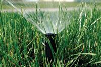What's Next for Smart Irrigation?