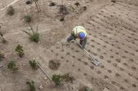 Arid, extra dry lots present new impediments for residential developers and builders in California and other drought states.