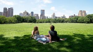Great Lawn, Sheep Meadow, Central Park, NYC