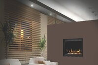 Fireplaces for the Remodeling Market