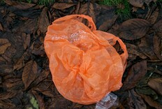 Voters Pass Statewide Ban on Plastic Carry-Out Bags