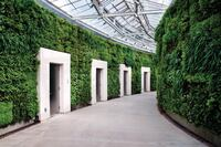 Longest Indoor Living Wall Opens