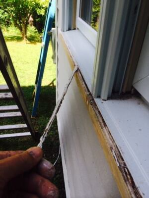 Overuse of caulking is a common paint problem.