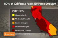 As Drought Persists, California Considers Policy Options