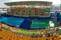 Green Pool Water Sparks Conspiracy Theories at Rio Games