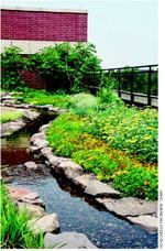 American Hydrotech Inc., Chicago, won a 2005 Green Roofs for Healthy Cities Green Roof Award of Excellence in the Intensive Institutional category for the Schwab Rehabilitation Hospital in Chicago. A therapeutic park and garden sit atop 10,000 square feet of rooftop space. The City of Chicago's Department of the Environment assisted in the project.