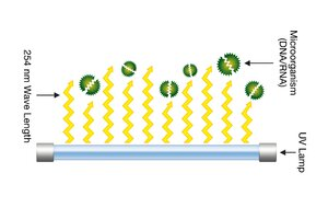 Study Says UV Disinfection Market Poised for Growth