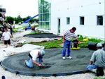 Flexible polyethylene forms were erected to outline the circular shape of the display pads in front of the building. Workers finish one of the pads, which has been compacted below the form top.