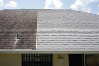 Atlas Pinnacle Pristine Roof Shingles