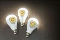 Security Built Into a Light Bulb