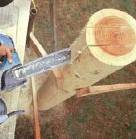 Figure 9. The pockets for beams also require plunge cutting with a chainsaw. The same safety rules apply, with the additional caveat that you should work from scaffolding for stability.