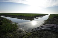 Court Rules in Favor of $16 Billion Water Diversion Project