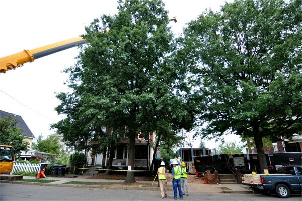 Workers watch as a shipping container is lowered onto its foundations at 3307 7th Street NE, Washington, D.C.