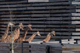 Paris Zoological Park