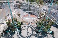 Architect Chats: Pavilions