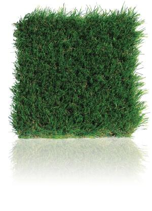 DuPont ForeverLawn Select Synthetic Grass, a collaboration between DuPont Landscape Systems and ForeverLawn, is a line of natural-looking synthetic grass products that feature a low-sheen, multicolored blade structure and a realistic tan thatch. The turfs durable monofilament fiber can withstand heavy traffic. The synthetic grass has a premium backing system, requires minimal infill, and is low maintenance and long lasting. The line includes four products (Select VR, Select LX, Select HD, and Select EL), each with its own blade height, face weight, and green hues. Suitable applications range from a small backyard area up to a full-scale commercial project. foreverlawn.com