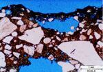 Figure 5: A cross section of the Project B re-textured surface shows porous hydrated paste (thin black layer at top) that has bridged over a depression in the surface. The resurfacing smoothed the surface, but the bridge will likely disintegrate in a very short time as will the underlying 1-mm-thick porous zone. The blue air void at the bottom of the photo is entrapped air from the original placement.