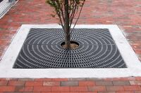 Environmentally friendly tree grates