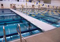 Pool Divider Bulkheads