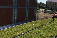 Flood-Prone City Looks to Vegetated Roofs for Relief