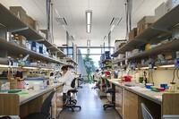 J. Craig Venter Institute