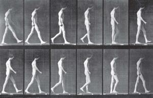 The new Gait Lab takes the 19th century stop-motion photographic analysis of Edward Muybridge into the 21st century.