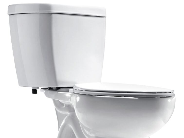 Niagara Conservation's Stealth toilet